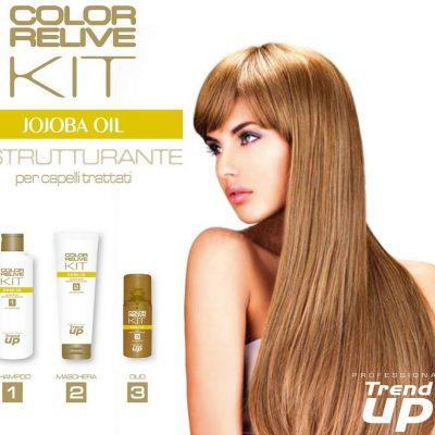Съживяваща серия за коса Color Relive