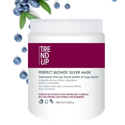 _vyr_2599_Trend-Up-Perfect-Blonde-mask-1000-ml-1
